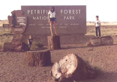 Cheryl with Jason and Kevin at Petrified Forest in Arizona